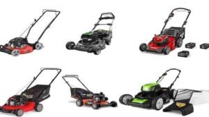 Best Push Lawn Mower for Rough Terrains