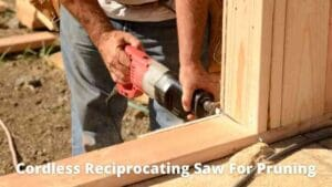 Best cordless reciprocating saw for pruning